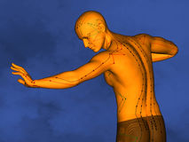Acupuncture model M-POSE Ma-s-90-03.png , 3D Model. Human Poses, Meridians and Acupoints, Human Body, Acupuncture Background, Blue Background Royalty Free Stock Photos