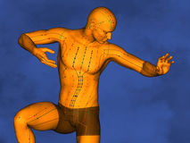Acupuncture model M-POSE Ma-s-90-09.png , 3D Model. Human Poses, Meridians and Acupoints, Human Body, Acupuncture Background, Blue Background Stock Image