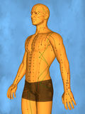 Acupuncture model M-POSE Mylie-01-3, 3D Model. Human Poses, Meridians and Acupoints,  Human Body,   Acupuncture Background Stock Photo
