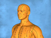 Acupuncture model M-POSE Mylie-01-15, 3D Model Stock Photography