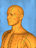 Acupuncture model M-POSE Mylie-01-9, 3D Model Royalty Free Stock Photo