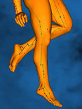 Acupuncture model M-POSE Vfm-1-11, 3D Model. Human Poses, Meridians and Acupoints, Human Body, Acupuncture Background, Blue Background Stock Image