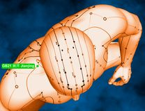 Acupuncture Point GB21 Jianjing, 3D Illustration, Blue Backgroun royalty free stock photos