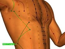 Acupuncture Point GB25 Jingmen, 3D Illustration, White Backgroun royalty free stock image
