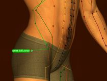 Acupuncture Point GB29 Juliao, 3D Illustration, Brown Background stock photo