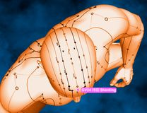 Acupuncture Point GV24 Shenting, 3D Illustration, Blue Backgroun Royalty Free Stock Photography