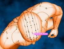 Acupuncture Point GV22 Xinhui, 3D Illustration, Blue Background Royalty Free Stock Photography