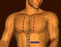 Acupuncture Point KI19 Yindu, 3D Illustration, Brown Background royalty free stock photo