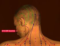 Acupuncture Point SI18 Quanliao, 3D Illustration, Brown Backgrou royalty free stock photography