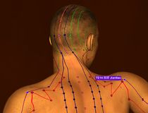 Acupuncture Point TE14 Jianliao, 3D Illustration, Brown Background stock photo