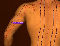 Acupuncture Point TE12 Xiaoluo, 3D Illustration, Brown Backgroun royalty free stock photography
