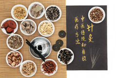 Acupuncture Traditional Chinese Medicine Royalty Free Stock Photos
