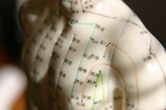 Acupunctuur stock afbeelding