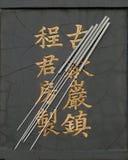 Acupunctuur en Karakters Royalty-vrije Stock Foto