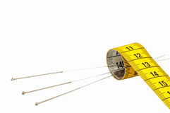 Acupunctuur voor gewichtsverlies Royalty-vrije Stock Afbeeldingen