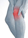 Acute pain in a man  knee. Male holding hand to spot of knee-ach Royalty Free Stock Photography