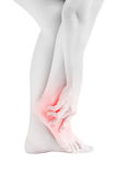 Acute pain in a woman  ankle isolated on white background. Clipping path on white background. Acute pain in a woman  ankle isolated on white background Stock Photo