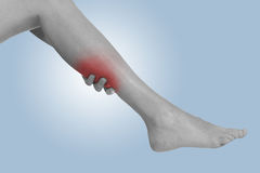 Acute pain in a woman calf Stock Image