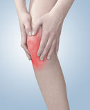 Acute pain in a woman knee. Stock Image