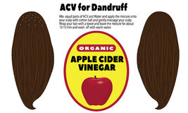 ACV for Dandruff. Haircare vector illustration on a white background Royalty Free Stock Photos