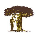 Adán y Eve Apple Serpent Woodcut ilustración del vector