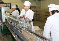 Ad una distilleria della vodka Immagine Stock