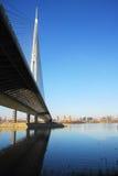 Ada桥梁塔在贝尔格莱德,塞尔维亚 图库摄影