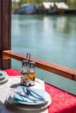 Ada Bojana-Flussuferrestaurant Stockbild