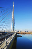 Ada-Brücke in Belgrad Stockfotografie