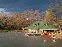 Ada Safari lake Royalty Free Stock Images