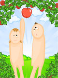 Adam and Eve Stock Photos