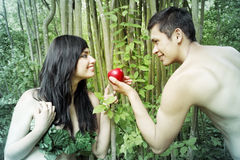 Adam, Eve Stockbild