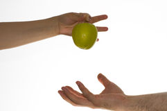 Adam and eve. Eve gives gren apple to adam royalty free stock photo
