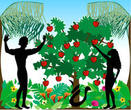 Adam & Eve Silhouettes Stock Images
