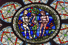 Adam Eve Stained Glass Notre Dame domkyrka Paris Frankrike arkivbilder