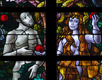 Adam and Eve (stained glass). A photo of Adam and Eve (stained glass Royalty Free Stock Photo