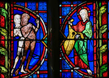 Adam and Eve - Stained Glass in Tours Cathedral Stock Image