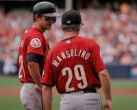 Adam Everett und Doug Mansolino, Astros Lizenzfreies Stockfoto