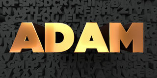 Adam - Gold text on black background - 3D rendered royalty free stock picture royalty free illustration