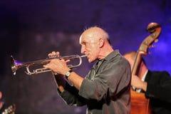 Adam Kawonczyk Quartet, der Live-Musik am €™ Krakaus Jazz All Soulsâ Tagesfestival im Wieliczka-Salzbergwerk spielt Stockfotografie