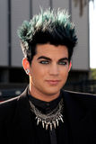 Adam Lambert Royalty Free Stock Image