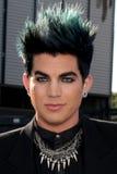 Adam Lambert Stockbilder
