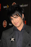Adam Lambert Stock Image
