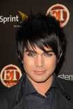 Adam Lambert Stock Images