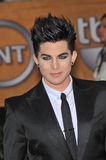 Adam Lambert. At the 16th Annual Screen Actor Guild Awards at the Shrine Auditorium. January 23, 2010 Los Angeles, CA Picture: Paul Smith / Featureflash royalty free stock photography