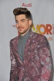 Adam Lambert Lizenzfreies Stockbild