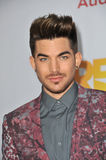 Adam Lambert. LOS ANGELES, CA - DECEMBER 8, 2013: Adam Lambert at the 15th Anniversary TrevorLIVE gala to benefit the Trevor Project at the Hollywood Palladium royalty free stock photos