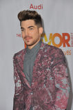 Adam Lambert. LOS ANGELES, CA - DECEMBER 8, 2013: Adam Lambert at the 15th Anniversary TrevorLIVE gala to benefit the Trevor Project at the Hollywood Palladium royalty free stock image