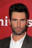 Adam Levine Photo libre de droits