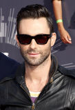 Adam Levine Stockbild